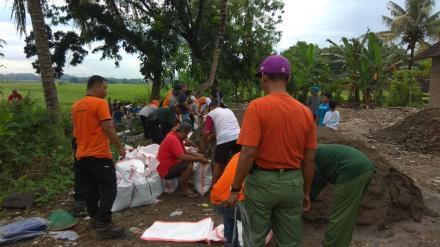 Pemerintah Desa Bangunjiwo melaksanakan pembangunan tanggul darurat untuk mencegah banjir