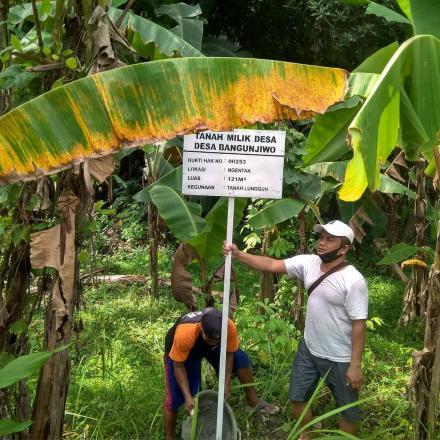 Amankan Aset Tanah Kas Kalurahan, Pemerintah Kalurahan Bangunjiwo pasang plakat tanah milik kaluraha